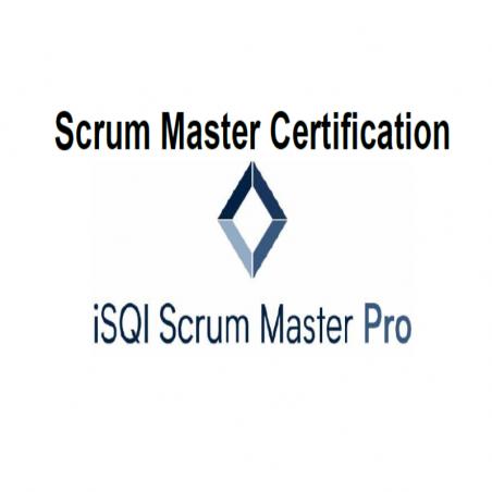 Scrum Master Pro